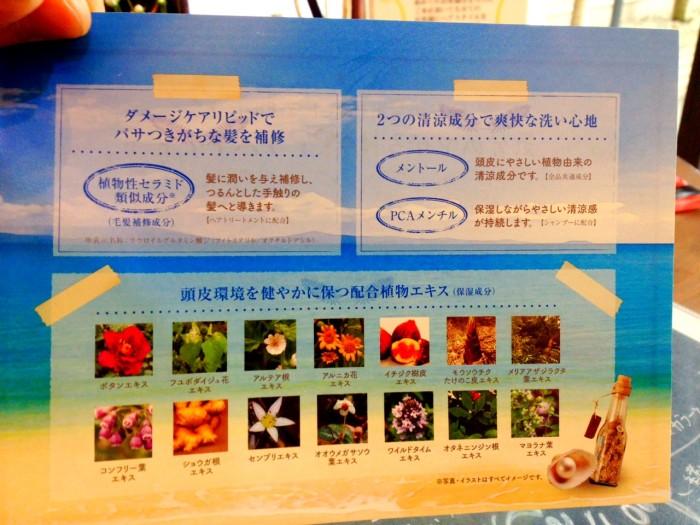 写真 2014-06-11 11 05 25