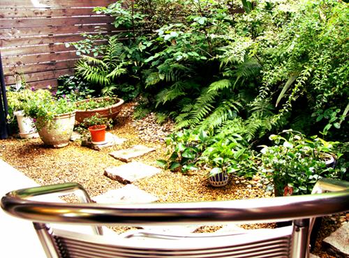 SHAKAの店内から見たお庭
